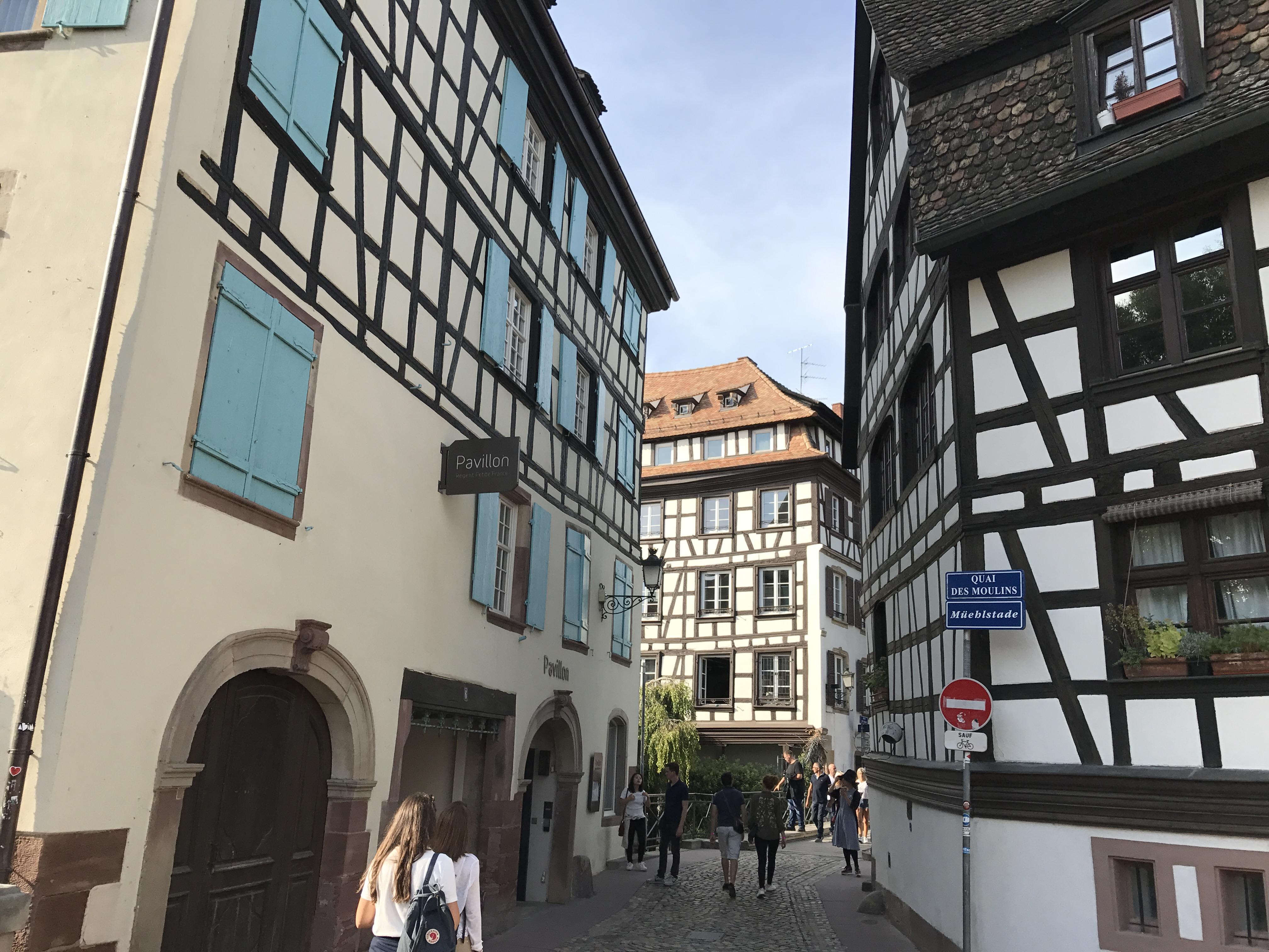 【フランス留学】リヨンでのアパートが見つからない!!【家探し】