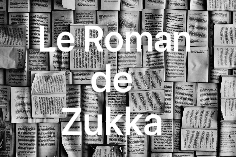 【その1】フランス私小説を書くことにした。【ズッカ自伝】